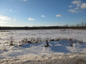 Team Krishan presents Great Country Lot; Second Lake Rd