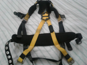 Harness and Retractable Lanyard