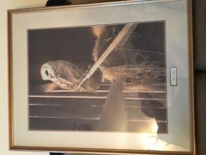 Arnold Nogy - The Noble Owl print for sale.