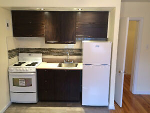 chaleureux grand 1 1/2 renove Cozy Loft Studio Downtown/Plateau