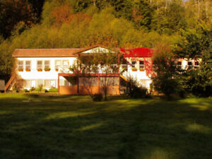 Group Accommodation in Secluded Sayward Forest