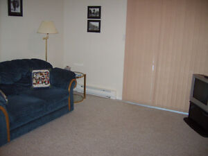 SMALL ONE BED FURNISHED SUITE - N. NANAIMO