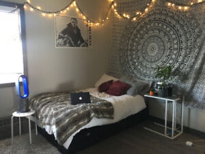 LAST MONTH FREE, MAY-AUGUST Brock summer sublet, all inclusive
