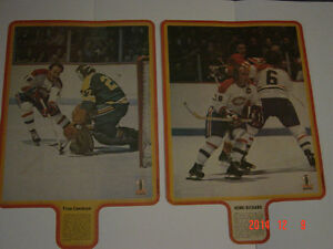 CARTES DE HOCKEY(LOT DE 16 POSTERS SPORT ILLUSTRÉ 1972-73)