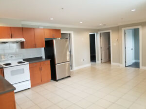 3 Bedroom Basement Suite in Fraserview/Killarney