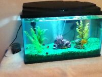 Tank and accesories for sale
