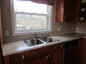 Laminate Counter Top and Double sink