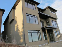 Any types of stucco, Acrylic or conventional, stone, parging!