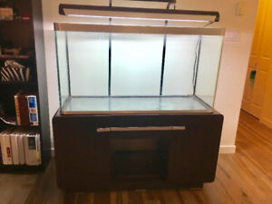 90 Gallon Fluval Osaka Fish Tank / Aquarium