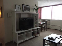 1 Bedroom for Rent in a Spacious 2 Bedroom Apartment