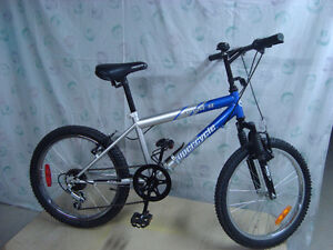 Youth's Bicycle