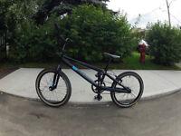 BMX HARO BLACKOUT PRO XL 2014