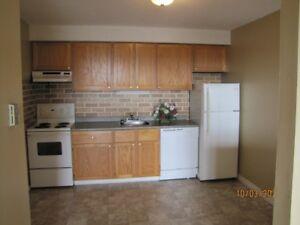 Roomy 2 bedroom apartment. East SJ.