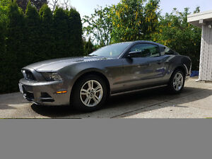 2013 Ford Mustang with Low km's!
