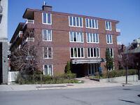 Très beau 4½ près de l'Université McGill