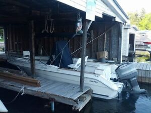 21Ft Sea Ray Laguna w/ 175hp Merc and tandem trailer
