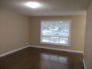Newmarket (Patterson & Elgin) Renovated 3 bedroom upper