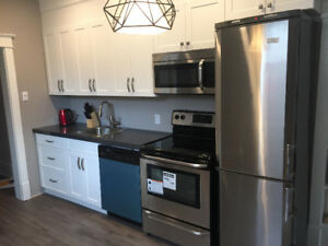 Fully Renovated Spacious 2 Bedroom With Laundry and Dishwasher