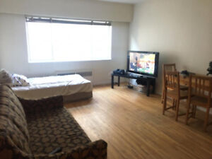 COMFORTABLE APARMENT IN DOWNTOWN, ONE BEDROOM