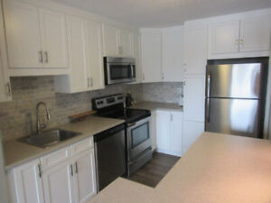 FULLY RENOVATED 3-Bed, 1.5-Bath LUXURY Condo For Sale