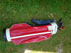 Golf Clubs and Bag--some clubs, vintage bag