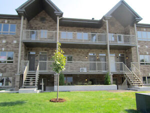 1 Bedroom Condo For Rent July 1st Du Plateau Area