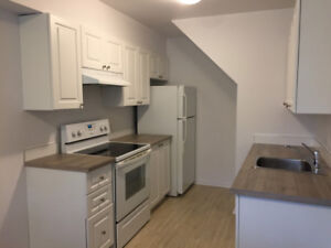 5 1/2 fully renovated apt. in Brossard