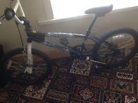 Octane Element BMX Bike
