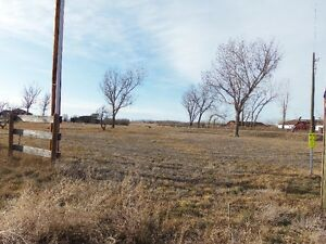Acreage Lots for Sale
