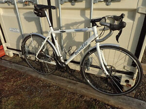 Brodie CX, road or touring bike