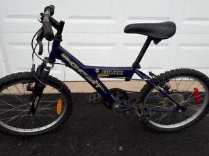 Children's Mountain Bike (20 inch wheel)