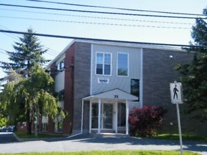 One Bedroom Apartment on Gaston Rd in Dartmouth