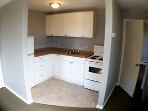 Newly Renovated! 1 BDRM Available NOW!