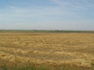 13.7 acres south of Taber