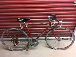 Sekine Men's ten speed bicycle