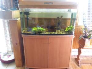 Aquarium JEBO R3100 50 galons