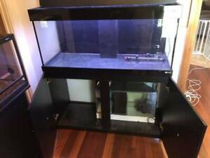 fish tank. Like new. Very large. On stand with pump & accessories