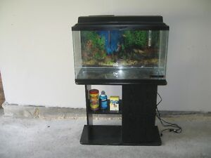 25 gallon aquarium with stand