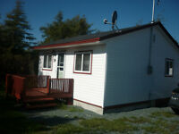 For Sale Cabin Roaches Line