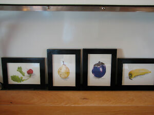 Hand Painted Original Water Colour Fruits and Vegetables Prints Kitchener / Waterloo Kitchener Area image 1