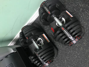 Bowflex 1090 Dumbbell Set and Bowflex Adjustable Bench