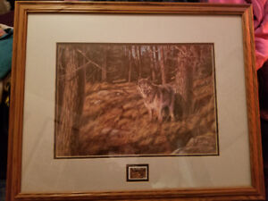 Renato Muccillo Framed Limited Picture Between The Shadows Wolf