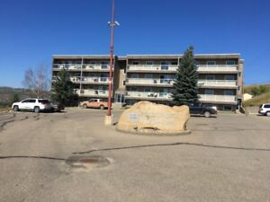 2 Bedroom Condo Apartment For Rent Peace River