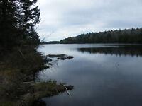 Lake Lots on Wallace Lake