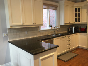 Kitchen cabinetry + granite + gas fireplace + gas cooktop