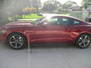 2016 Ford Mustang V6 Coupe (2 door)