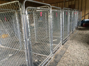 Kennel Cages in Hearst ON