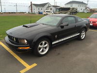 2008 Ford Mustang Coupe ****Amazing condition****