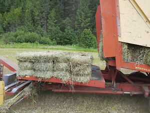 Straw and grain for sale