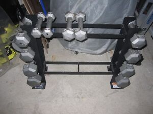 HeX SteeL Dumbells and RacK gym weights exercise